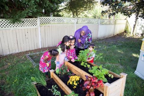 garden-boxes